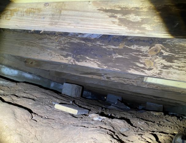 pier and beam wood rot